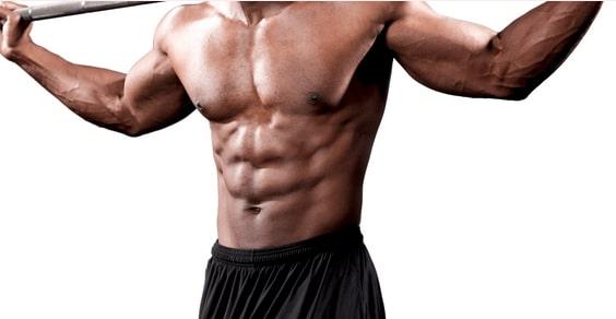 Abdos visibles, traitement d'Elite Fitness