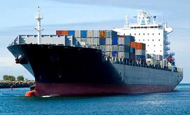 Fret maritime de Forwarding et Logistic