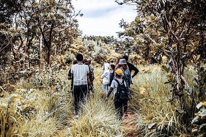 Safari à pied N'Zi River Lodge