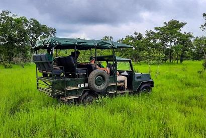 Safari en jeep N'Zi River Lodge