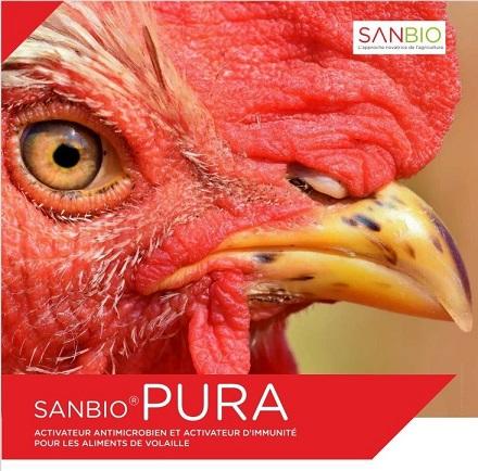 Sanbio pura africagri